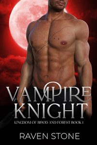 book cover for Vampire Knight by Raven Stone